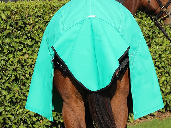 GREGORY EQUINE TAIL GUARD