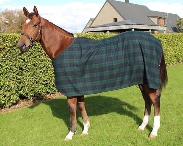 Gregory Equine Woolen Dress Rug 2
