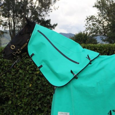 GREGORY EQUINE LINED CANVAS NECK PIECES