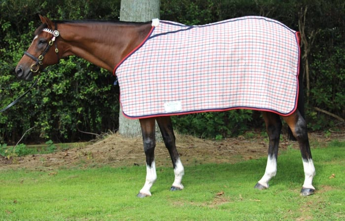 Gregory Equine Wool Dress Rug