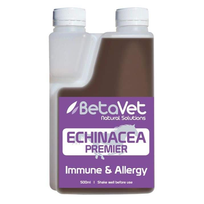 Betavet Echinacea Premier